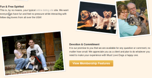 you-must-love-dogs-dating-scam-site